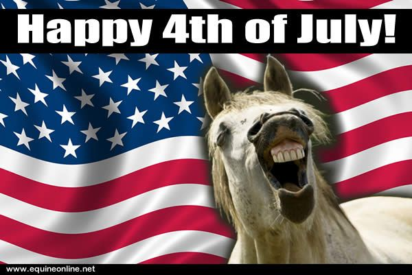 Funny Happy 4th of July Pictures